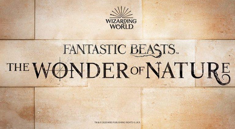 Harry Potter au cœur d'une exposition originale à Londres